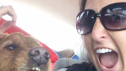 Dog Puking During Selfie Is The Greatest Selfie EVER
