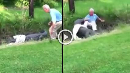 Alligator Attacks Old Guy On Golf Course