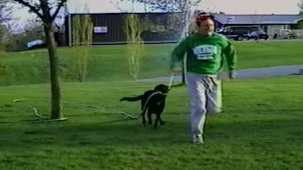 Dog Steals Hose And Completely Drenches His Owner