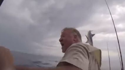 Shark Jumps 12 Feet Out Of The Water