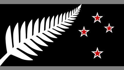 Top 40 NZ Flag Designs Released
