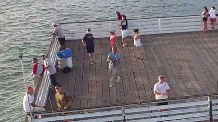Guy Catches A Drone With The Perfect Cast!