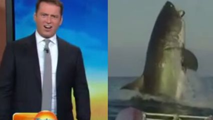 Karl Stefanovic's Reaction To This Shark Video Is AMAZING!