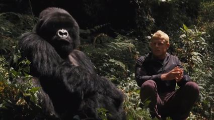 Surfer Mick Fanning Hangs With Gorillas In Rwanda