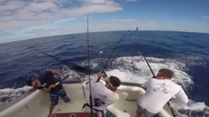 Fisherman Almost Impaled By A Marlin