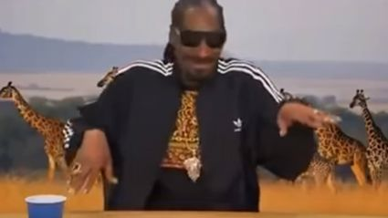 Snoop Dogg Narrating A Nature Documentary!
