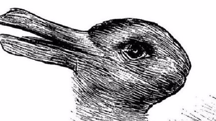 Duck Or Rabbit? What The Answer Says About Your Brain