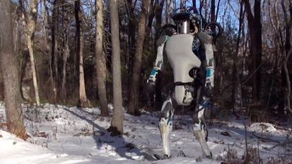 Watch This Super Impressive Robot Get Bullied