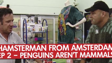Hamsterman From Amsterdam: Ep 2 – Penguins Aren't Mammals