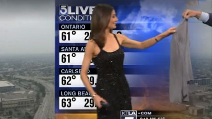 "Weatherwoman Forced To ""Cover Up"" Her ""Risque"" Outfit By ""Outraged"" Viewers"