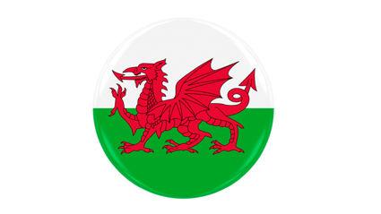 Hauraki Breakfast - Penis Or Genius: Wales