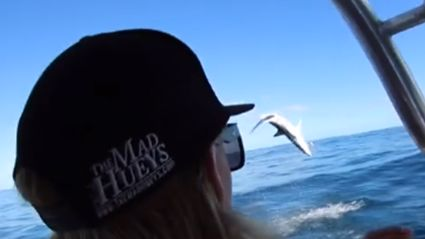 Watch This Mako Shark Leap Out Of The Water And Scare The SH*T Out Of Some Aussies