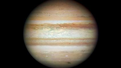 Hauraki Breakfast - Penis Or Genius: Jupiter