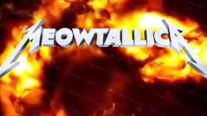 Introducing 'Meowtallica'