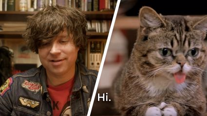 Watch as Ryan Adams gets interviewed by a cat...