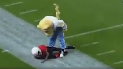 Please enjoy this compilation of mascots destroying kids