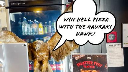 Win Hell Pizza with the Hauraki Hawk